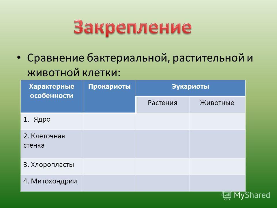 Сравнение бактериальной, растительной и животной клетки: Характерные особенности ПрокариотыЭукариоты РастенияЖивотные 1.Ядро 2. Клеточная стенка 3. Хлоропласты 4. Митохондрии