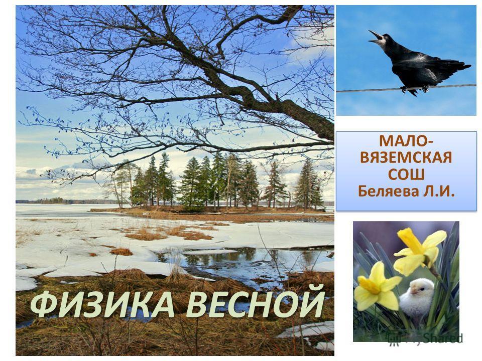 ФИЗИКА ВЕСНОЙ МАЛО- ВЯЗЕМСКАЯ СОШ Беляева Л.И.