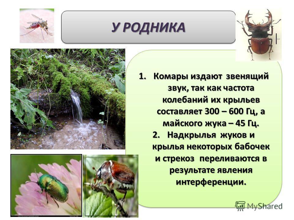 У РОДНИКА 1.Комары издают звенящий звук, так как частота колебаний их крыльев составляет 300 – 600 Гц, а майского жука – 45 Гц. 2.Надкрылья жуков и крылья некоторых бабочек и стрекоз переливаются в результате явления интерференции. 1.Комары издают зв