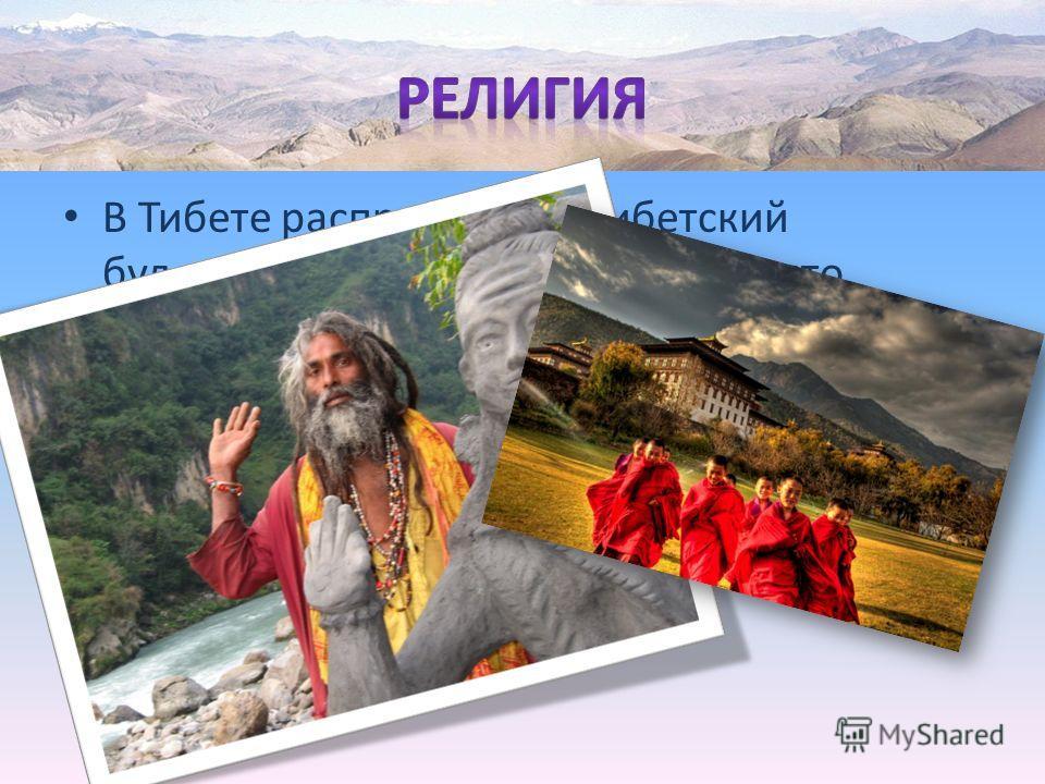 В Тибете распространен тибетский буддизм, который на западе принято называть ламаизмом. До того как буддизм попал в Тибет здесь существовала древняя религия Бон, основанная на шаманизме и поклонении духам природы и предков. Некоторые народы Тибета до
