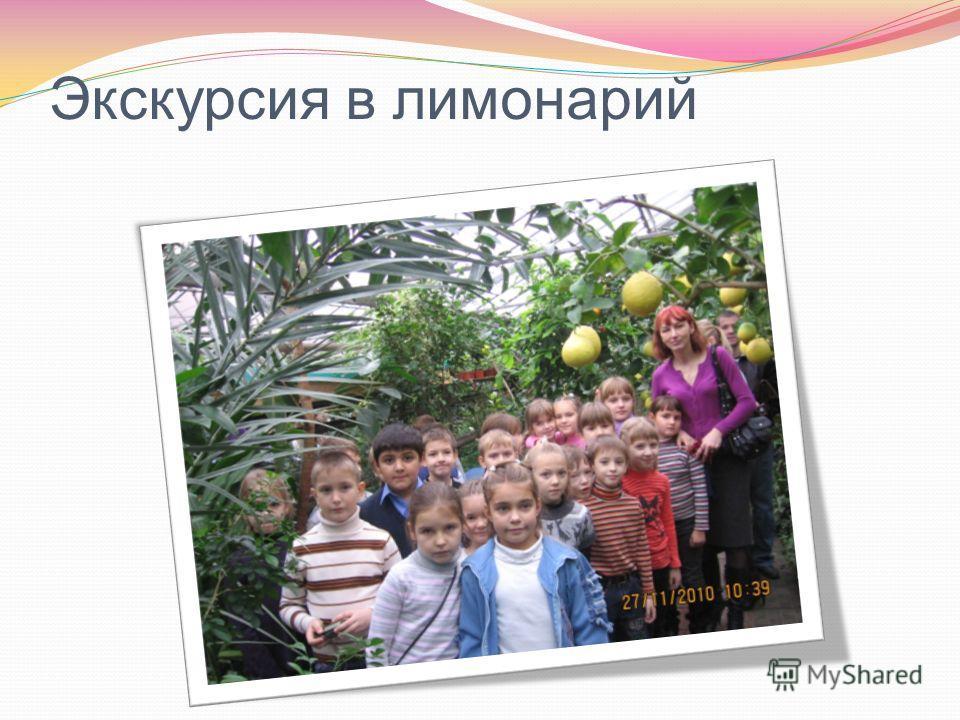 Экскурсия в лимонарий