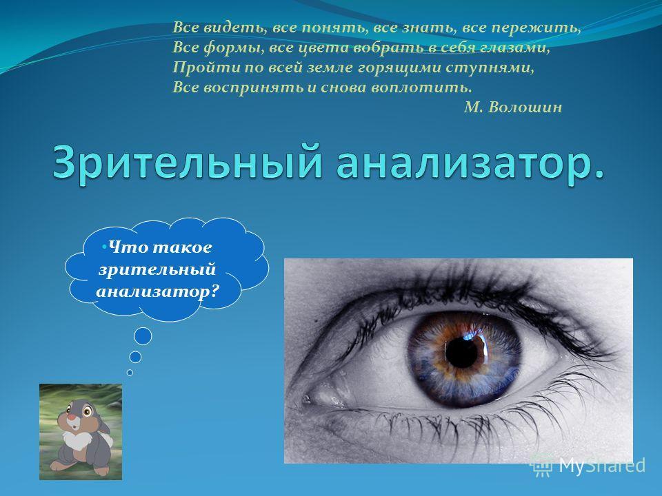 Что такое зрительный анализатор? Все видеть, все понять, все знать, все пережить, Все формы, все цвета вобрать в себя глазами, Пройти по всей земле горящими ступнями, Все воспринять и снова воплотить. М. Волошин
