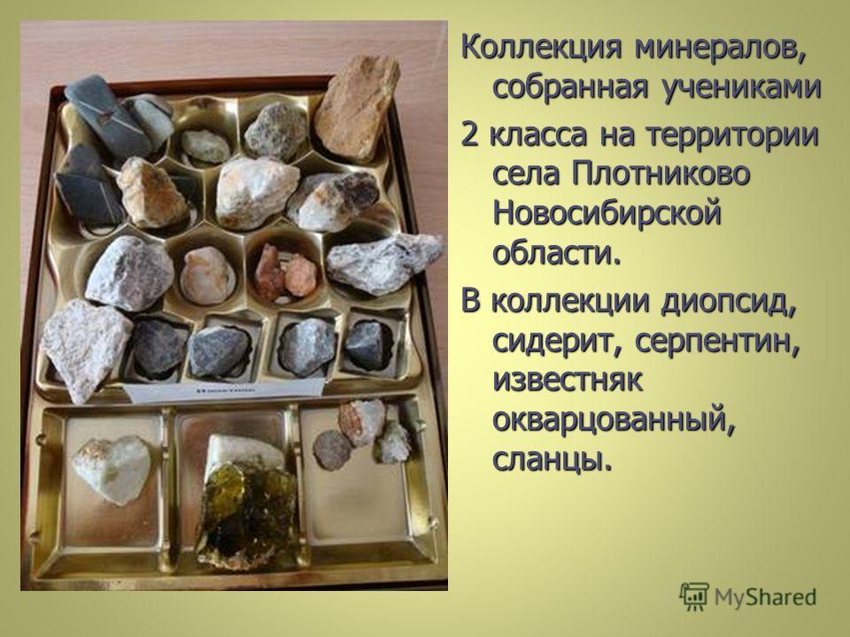 Коллекция минералов, собранная учениками 2 класса на территории села Плотниково Новосибирской области. В коллекции диопсид, сидерит, серпентин, известняк окварцованный, сланцы.