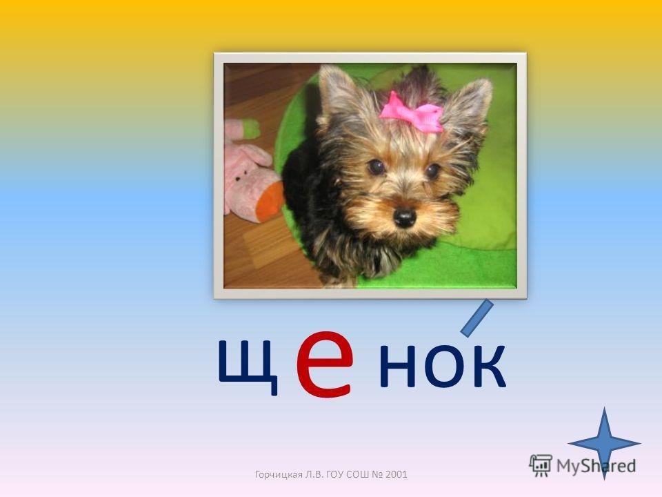 Щенок -детёныш собаки (также лисы, волка и т.д.) Горчицкая Л.В. ГОУ СОШ 2001