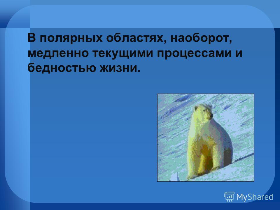 В полярных областях, наоборот, медленно текущими процессами и бедностью жизни.