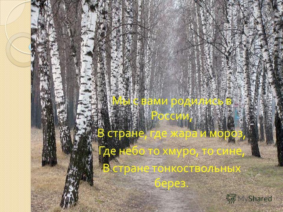 Мы с вами родились в России, В стране, где жара и мороз, Где небо то хмуро, то сине, В стране тонкоствольных берез.