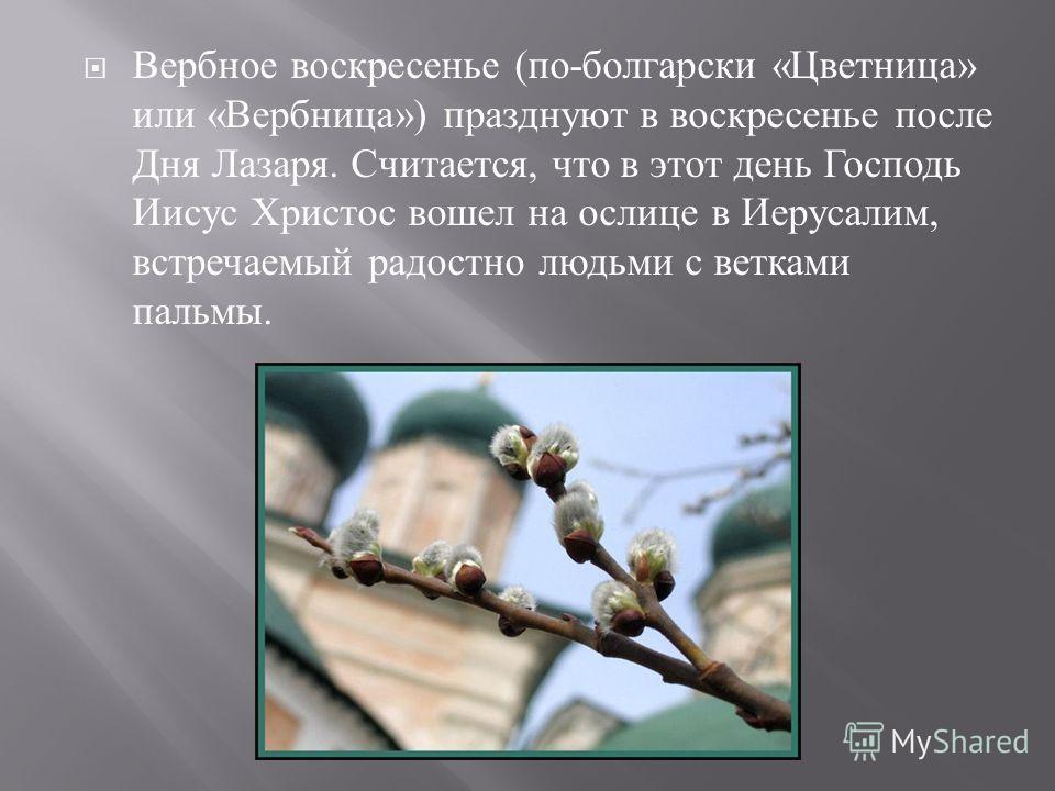 Вербное воскресенье ( по - болгарски « Цветница » или « Вербница ») празднуют в воскресенье после Дня Лазаря. Считается, что в этот день Господь Иисус Христос вошел на ослице в Иерусалим, встречаемый радостно людьми с ветками пальмы.