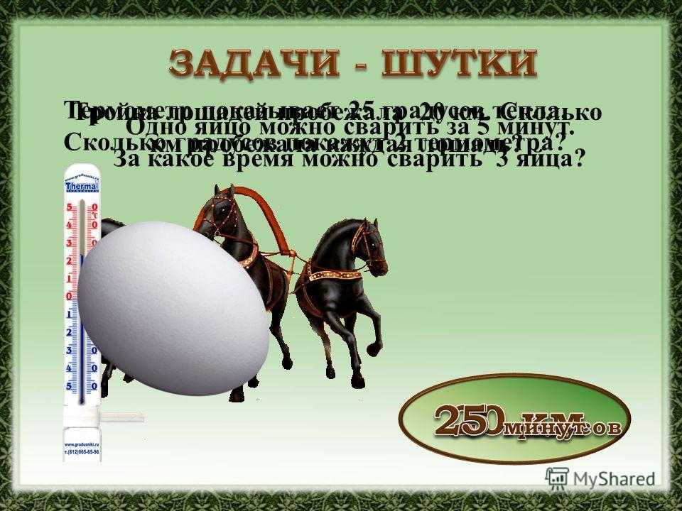 Тройка лошадей пробежала 20 км. Сколько км пробежала каждая лошадь? Термометр показывает 25 градусов тепла. Сколько градусов покажут 2 термометра? Одно яйцо можно сварить за 5 минут. За какое время можно сварить 3 яйца?