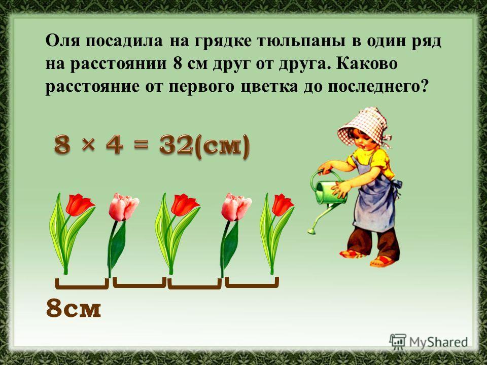 Оля посадила на грядке тюльпаны в один ряд на расстоянии 8 см друг от друга. Каково расстояние от первого цветка до последнего? 8см