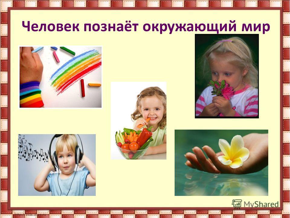 Бабайцева Рабочая Программа Русский Язык Скачать