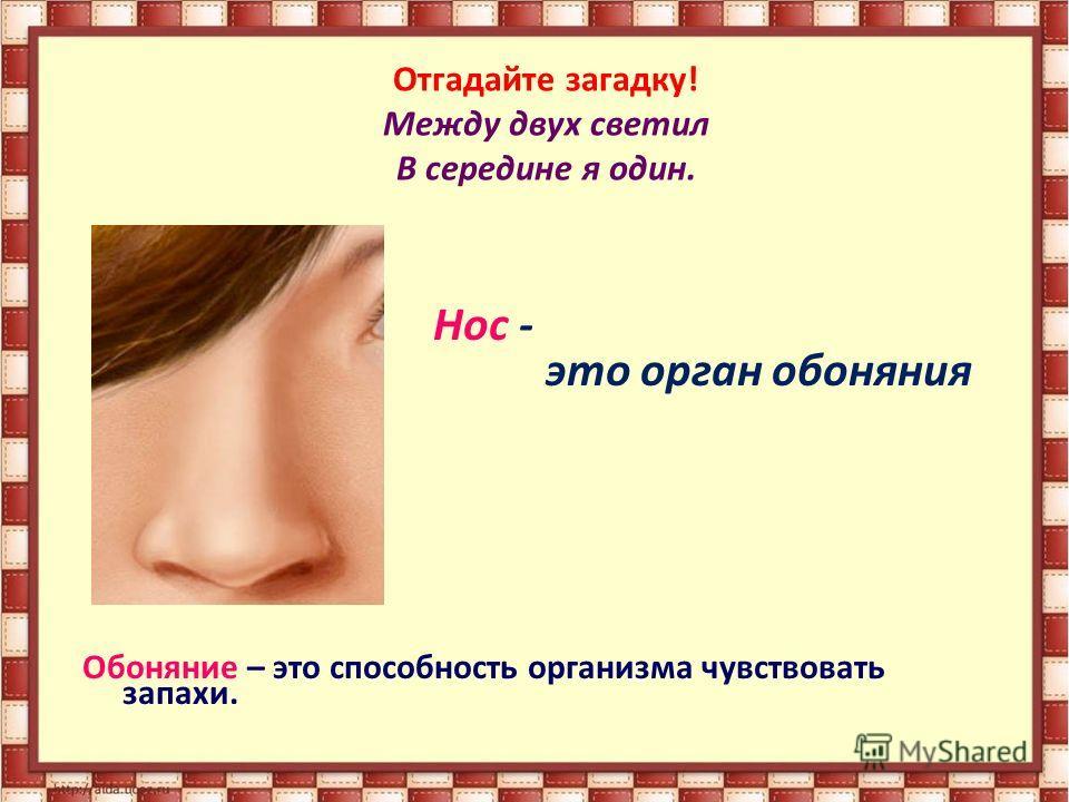 Отгадайте загадку! Между двух светил В середине я один. Нос - это орган обоняния Обоняние – это способность организма чувствовать запахи.