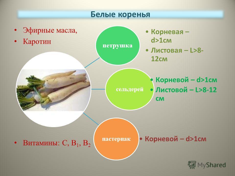 Использование свеклы в кулинарии гарнирысалаты Вторые блюда супы