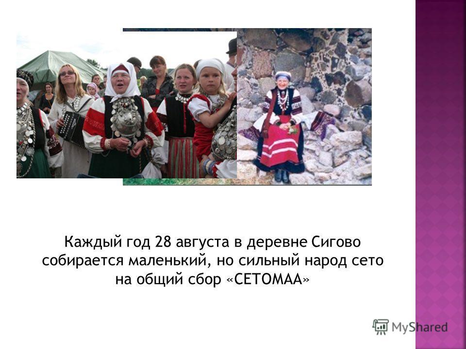 Каждый год 28 августа в деревне Сигово собирается маленький, но сильный народ сето на общий сбор «СЕТОМАА»