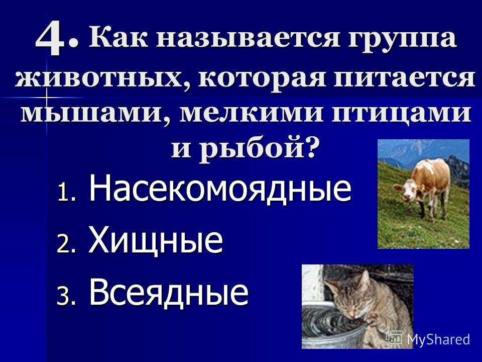 4. Как называется группа животных, которая питается мышами, мелкими птицами и рыбой? 1. Н асекомоядные 2. Х ищные 3. В сеядные