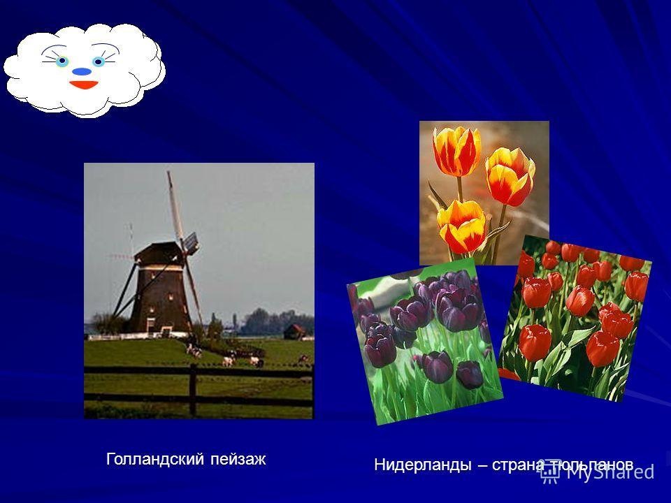 Голландский пейзаж Нидерланды – страна тюльпанов