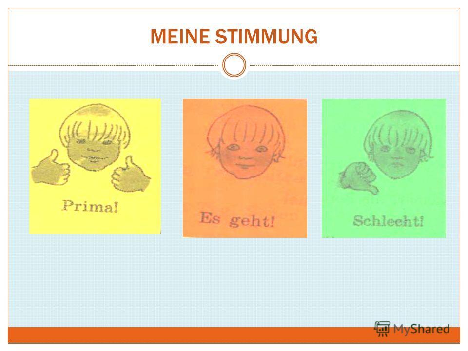 MEINE STIMMUNG