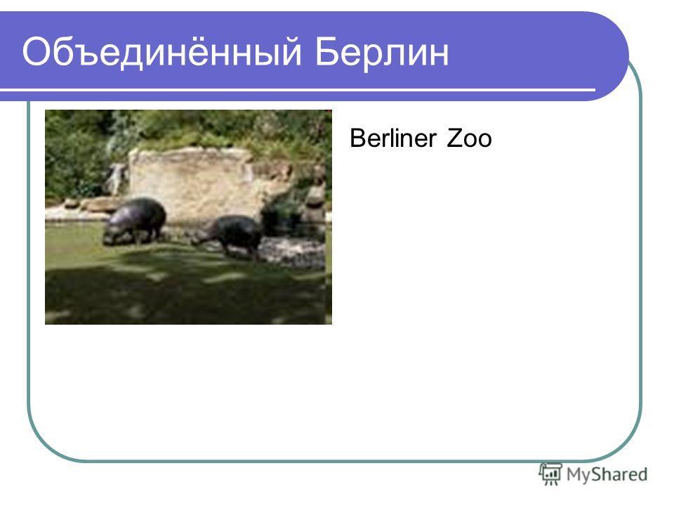 Объединённый Берлин Berliner Zoo