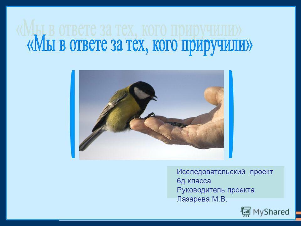 Исследовательский проект 6д класса Руководитель проекта Лазарева М.В.