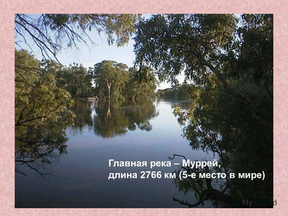 Главная река – Муррей, длина 2766 км (5-е место в мире)