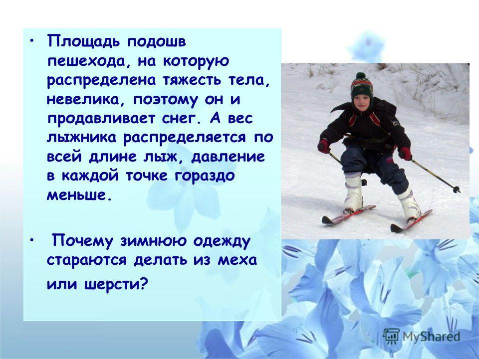 Площадь подошв пешехода, на которую распределена тяжесть тела, невелика, поэтому он и продавливает снег. А вес лыжника распределяется по всей длине лыж, давление в каждой точке гораздо меньше. Почему зимнюю одежду стараются делать из меха или шерсти?