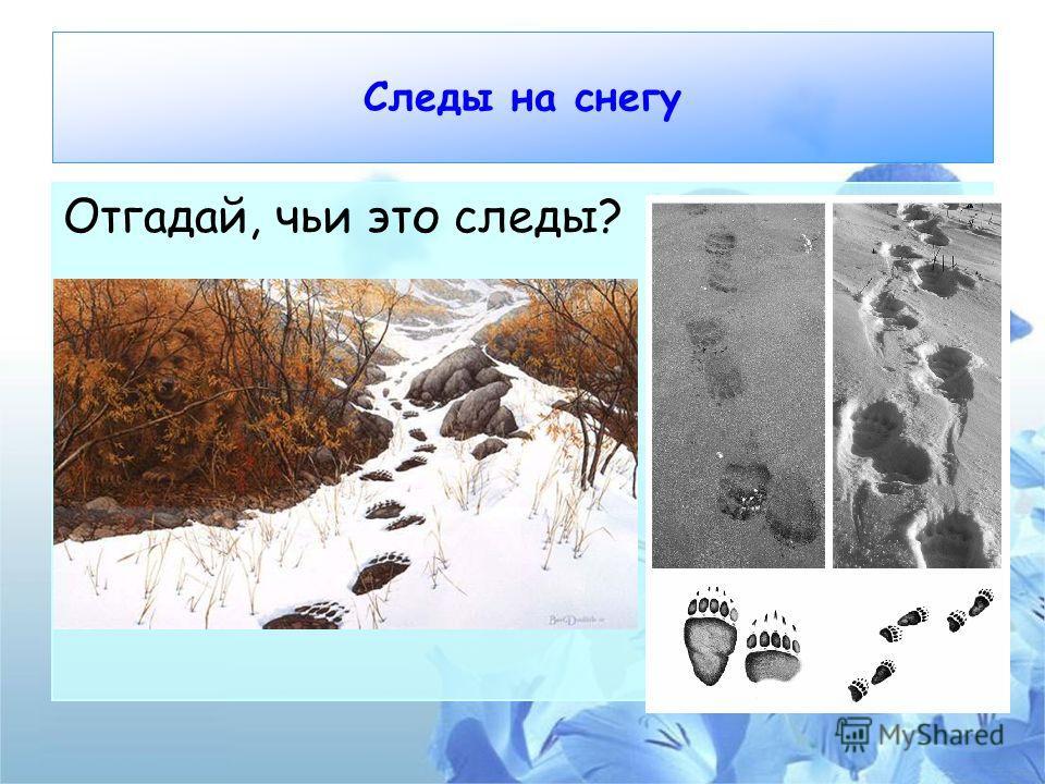 Следы на снегу Отгадай, чьи это следы?