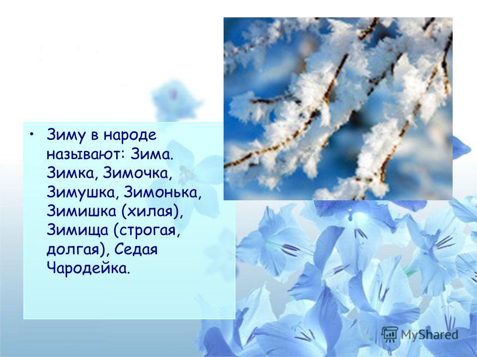 Зиму в народе называют: Зима. Зимка, Зимочка, Зимушка, Зимонька, Зимишка (хилая), Зимища (строгая, долгая), Седая Чародейка.