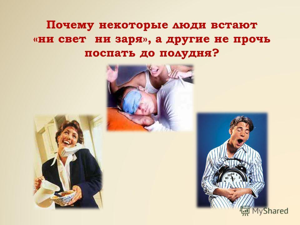 Почему некоторые люди встают «ни свет ни заря», а другие не прочь поспать до полудня?