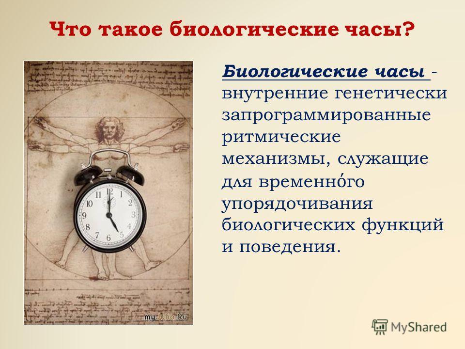 Что такое биологические часы? Биологические часы - внутренние генетически запрограммированные ритмические механизмы, служащие для временн го упорядочивания биологических функций и поведения.