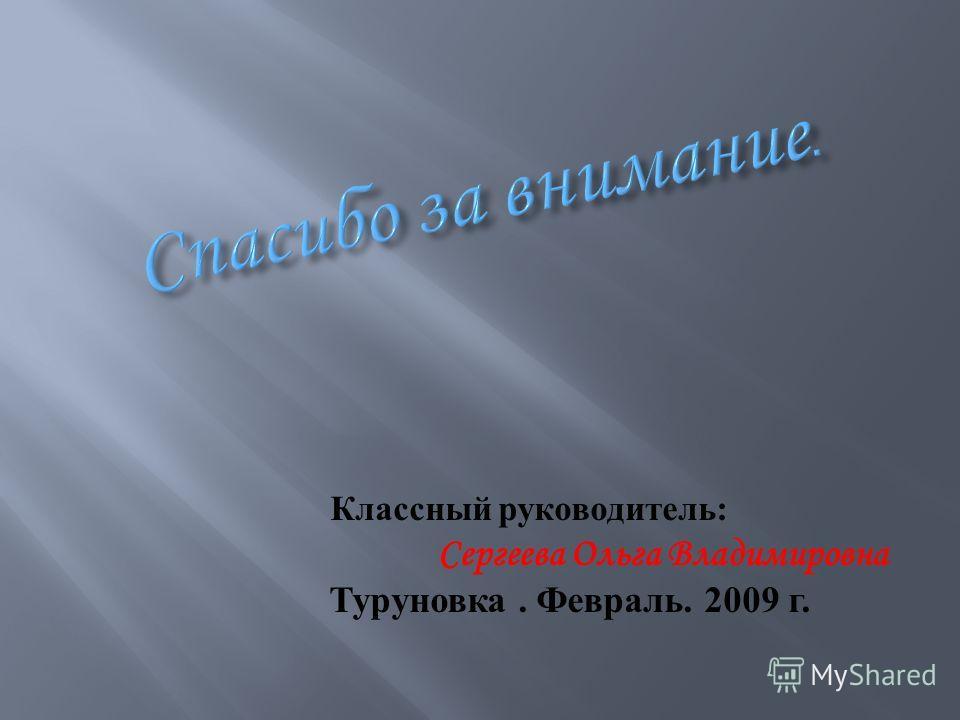 Классный руководитель : Сергеева Ольга Владимировна Туруновка. Февраль. 2009 г.