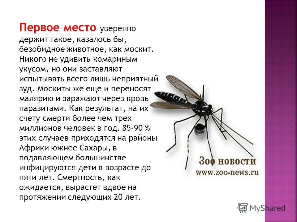 Первое место уверенно держит такое, казалось бы, безобидное животное, как москит. Никого не удивить комариным укусом, но они заставляют испытывать всего лишь неприятный зуд. Москиты же еще и переносят малярию и заражают через кровь паразитами. Как ре