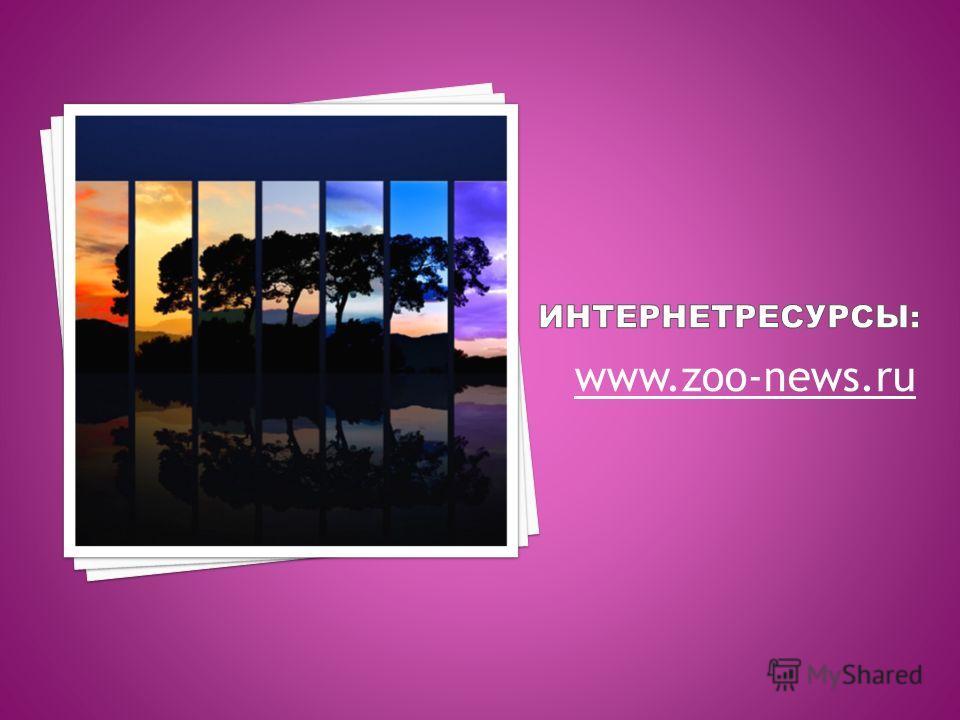 www.zoo-news.ru