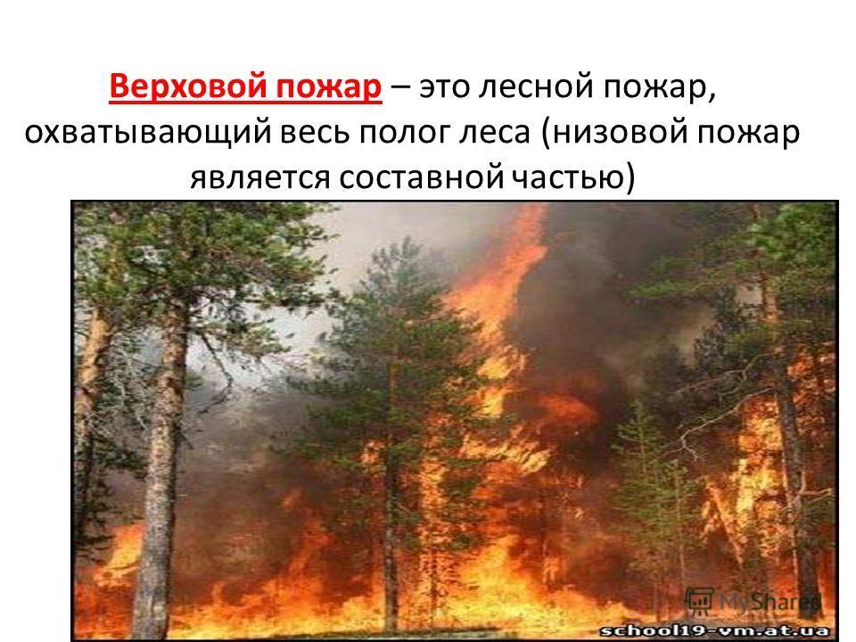Верховой пожар – это лесной пожар, охватывающий весь полог леса (низовой пожар является составной частью)