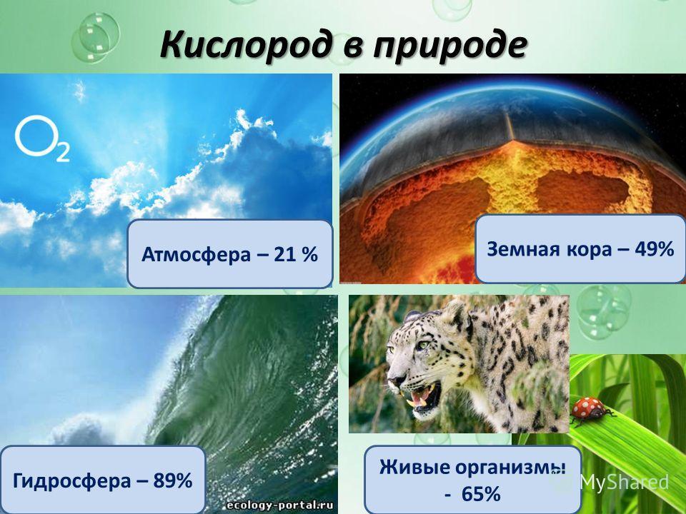 Кислород в природе Атмосфера – 21 % Гидросфера – 89% Земная кора – 49% Живые организмы - 65%