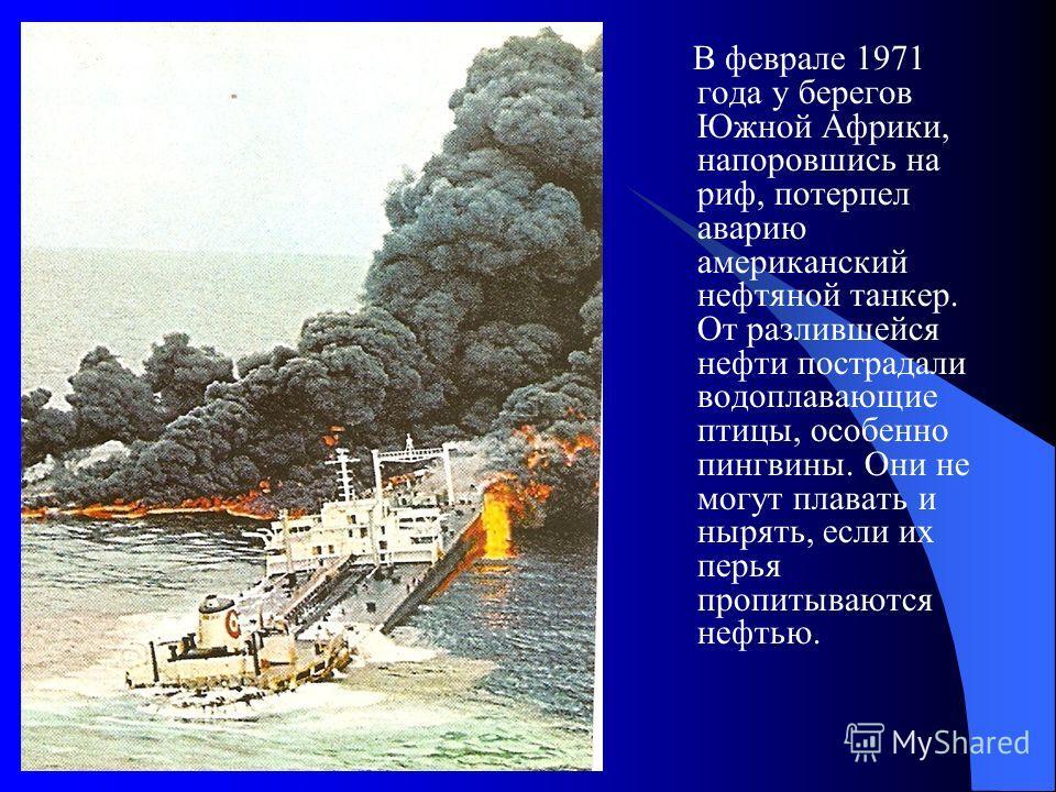 В феврале 1971 года у берегов Южной Африки, напоровшись на риф, потерпел аварию американский нефтяной танкер. От разлившейся нефти пострадали водоплавающие птицы, особенно пингвины. Они не могут плавать и нырять, если их перья пропитываются нефтью.