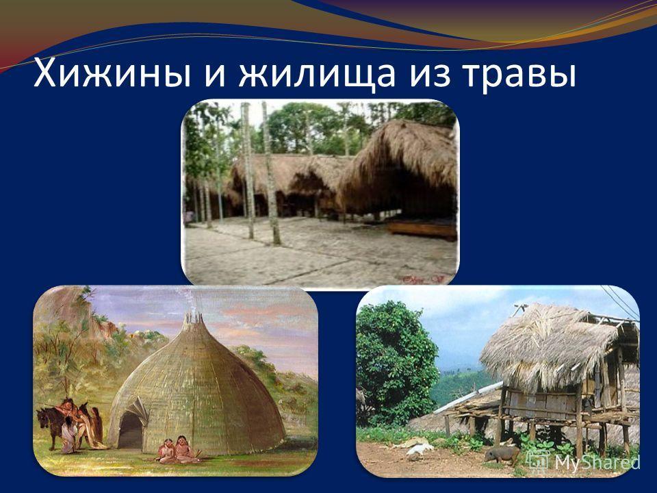 Хижины и жилища из травы