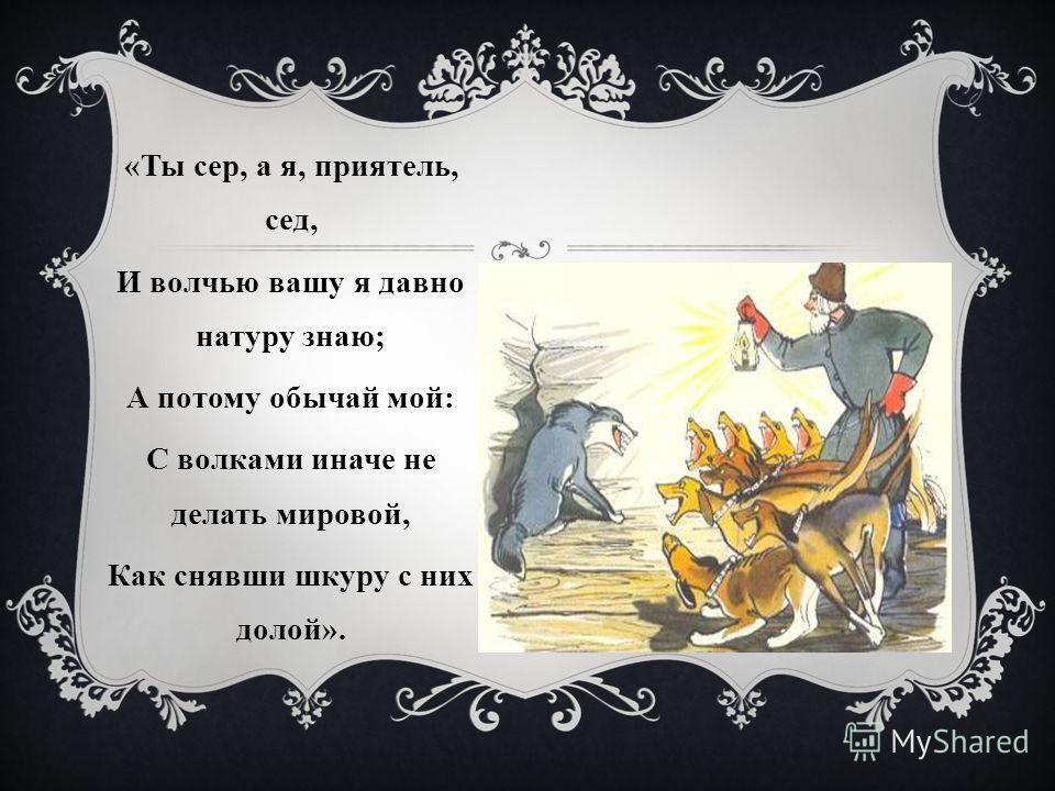 «Ты сер, а я, приятель, сед, И волчью вашу я давно натуру знаю; А потому обычай мой: С волками иначе не делать мировой, Как снявши шкуру с них долой».