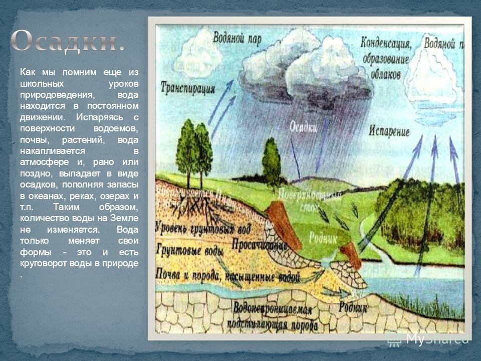 Как мы помним еще из школьных уроков природоведения, вода находится в постоянном движении. Испаряясь с поверхности водоемов, почвы, растений, вода накапливается в атмосфере и, рано или поздно, выпадает в виде осадков, пополняя запасы в океанах, реках