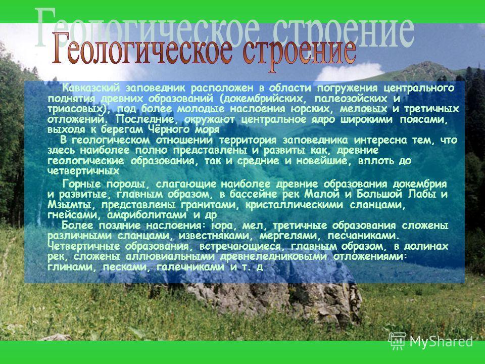 Кавказский заповедник расположен в области погружения центрального поднятия древних образований (докембрийских, палеозойских и триасовых), под более молодые наслоения юрских, меловых и третичных отложений. Последние, окружают центральное ядро широким