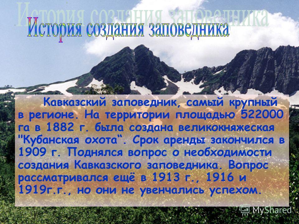 Кавказский заповедник, самый крупный в регионе. На территории площадью 522000 га в 1882 г. была создана великокняжеская