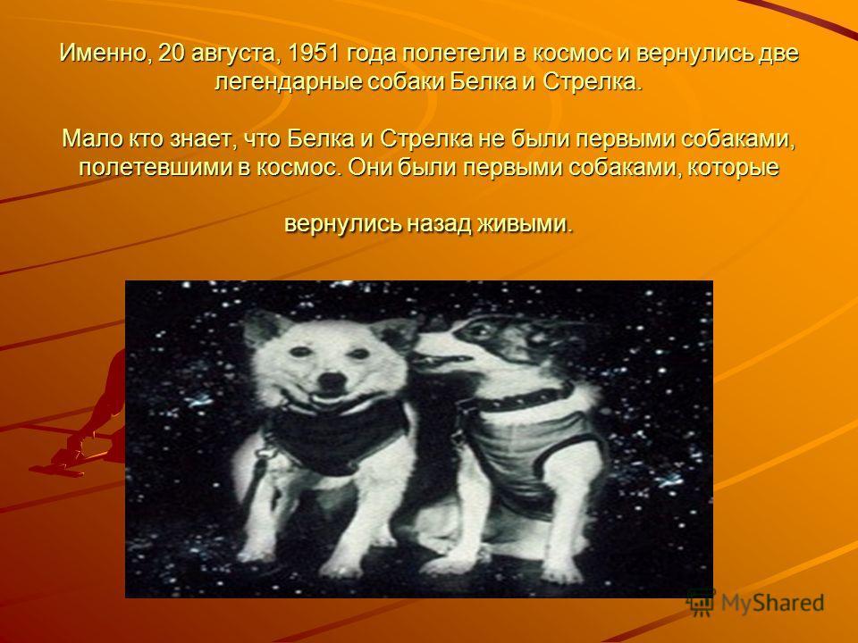 Дворняги цыган и дерик Кандидаты в космонавты отыскивались в простых подворотнях. Считалось, что дворняги наиболее живучие из всех пород собак. Первый полет был назначен на 22 июля 1951 года. На борту – дворняги Цыган и Дерик. Космонавтов накормили м