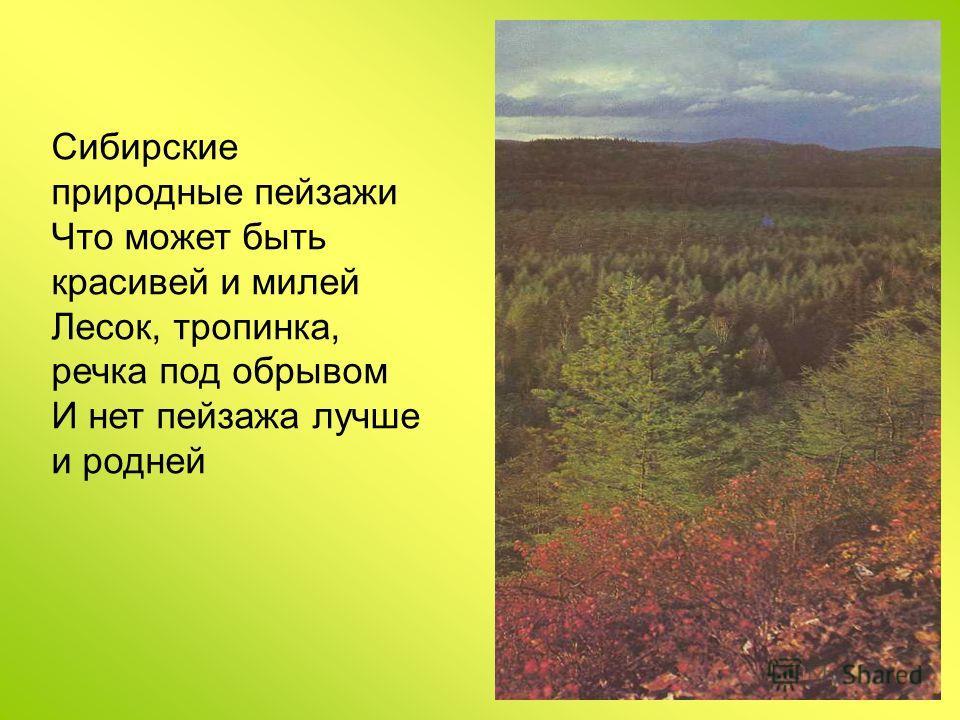 Сибирские природные пейзажи Что может быть красивей и милей Лесок, тропинка, речка под обрывом И нет пейзажа лучше и родней