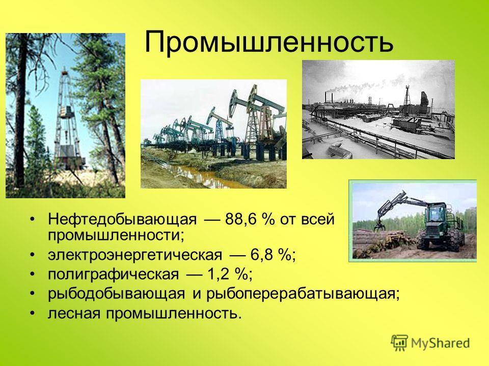 Промышленность Нефтедобывающая 88,6 % от всей промышленности; электроэнергетическая 6,8 %; полиграфическая 1,2 %; рыбодобывающая и рыбоперерабатывающая; лесная промышленность.
