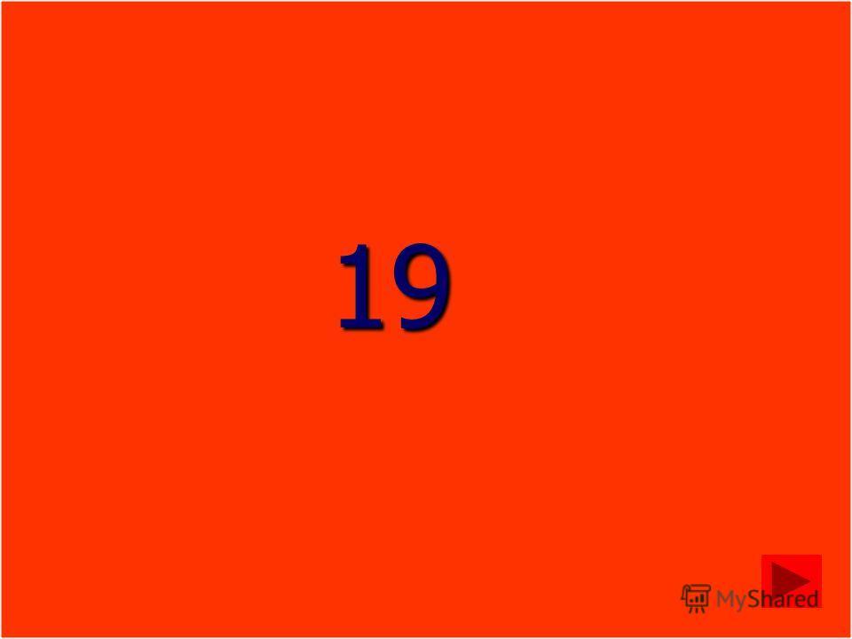 19 19