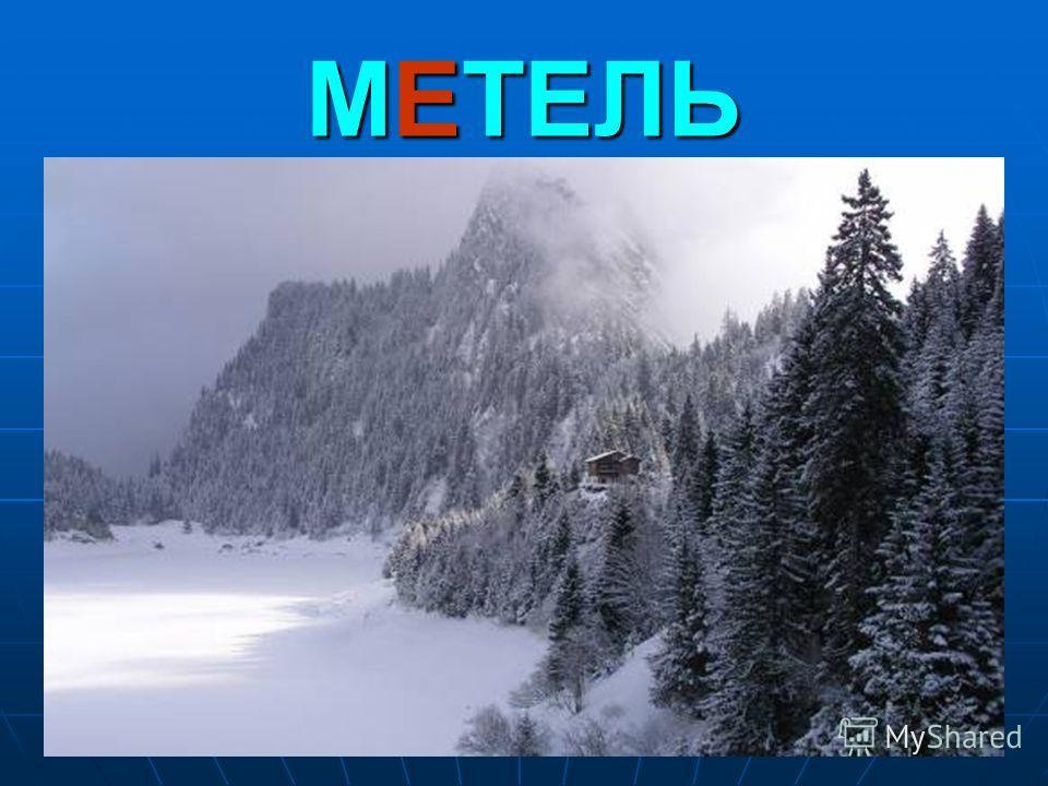 20 МЕТЕЛЬ