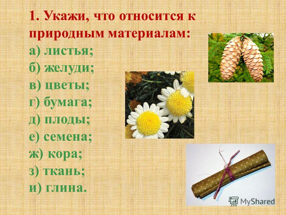 1. Укажи, что относится к природным материалам: а) листья; б) желуди; в) цветы; г) бумага; д) плоды; е) семена; ж) кора; з) ткань; и) глина.