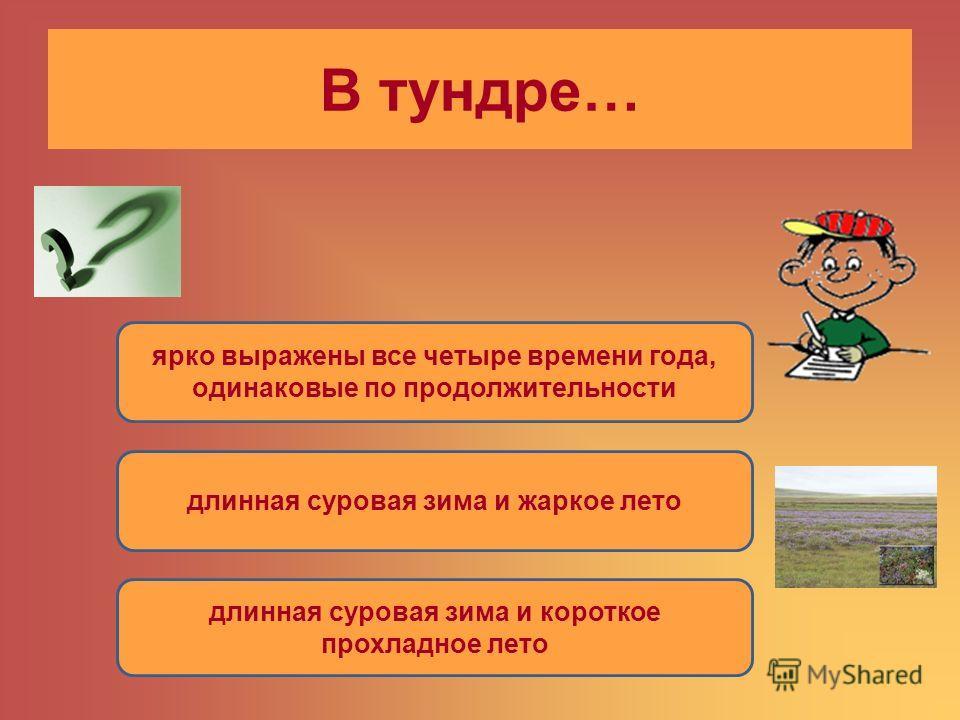 В тундре… ярко выражены все четыре времени года, одинаковые по продолжительности длинная суровая зима и жаркое лето длинная суровая зима и короткое прохладное лето