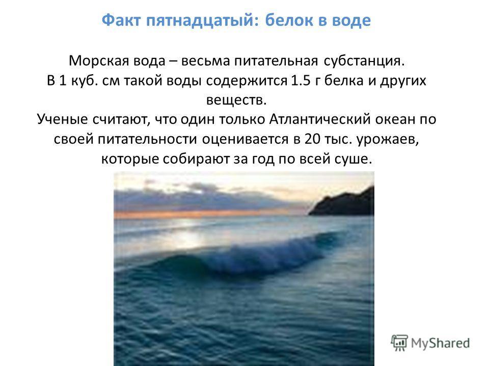 Факт пятнадцатый: белок в воде Морская вода – весьма питательная субстанция. В 1 куб. см такой воды содержится 1.5 г белка и других веществ. Ученые считают, что один только Атлантический океан по своей питательности оценивается в 20 тыс. урожаев, кот