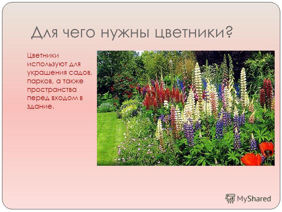 Для чего нужны цветники? Цветники используют для украшения садов, парков, а также пространства перед входом в здание.