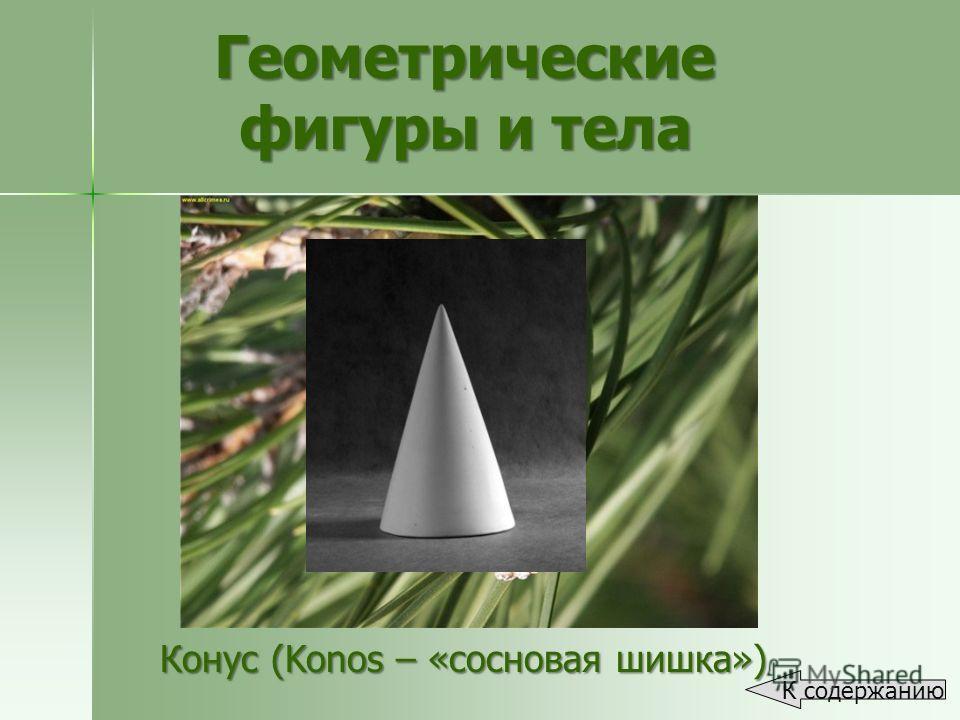 Конус (Konos – «сосновая шишка») Геометрические фигуры и тела К содержанию