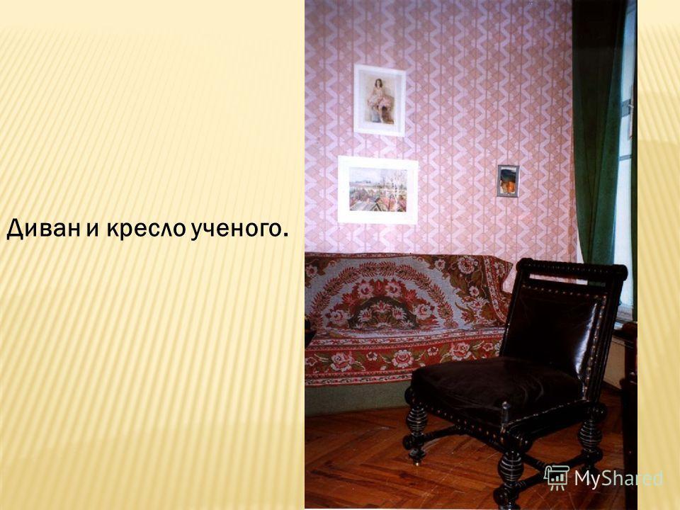 Диван и кресло ученого.